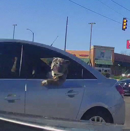 I don't normally pull stills off my dash cam, but today was a good day