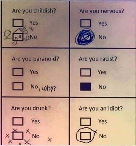Are you an idiot?