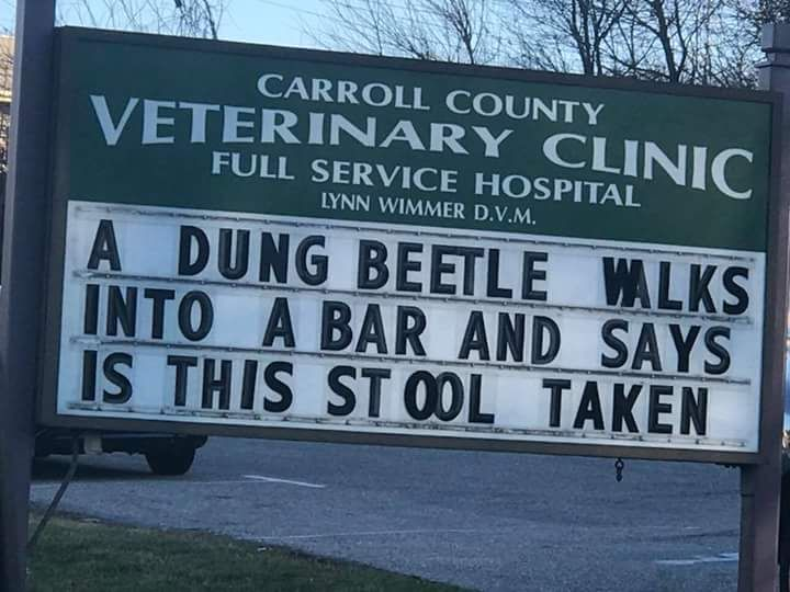 This vet in my home town always delivers with the jokes
