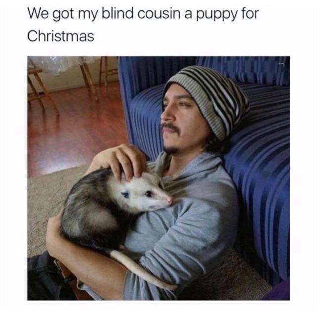 Good boy Rody