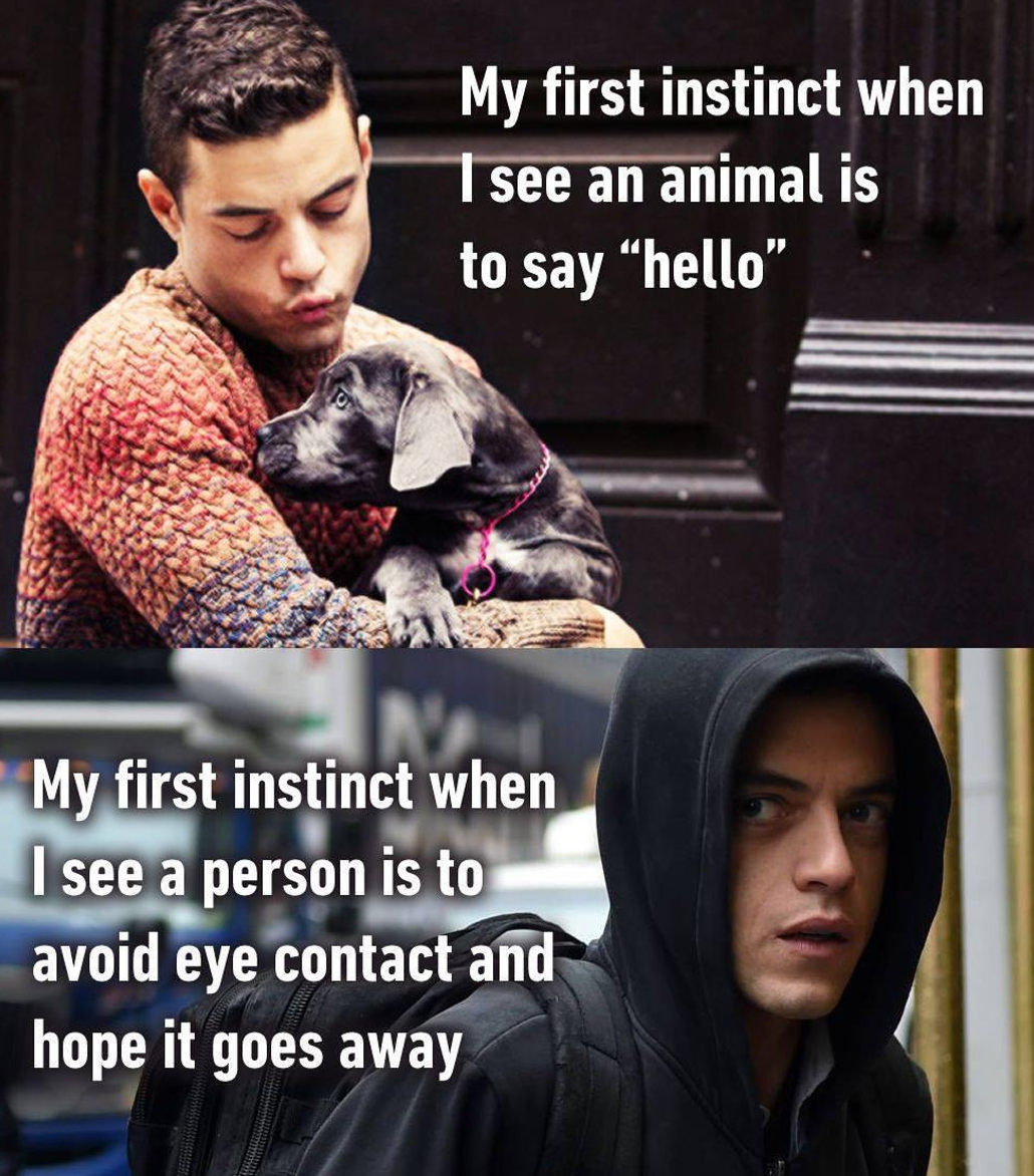 Hi, doggy, I'm a social butterfly