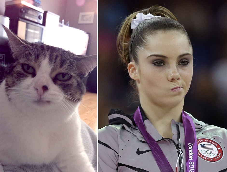 This cat constantly looks like she won silver medal in gymnastics