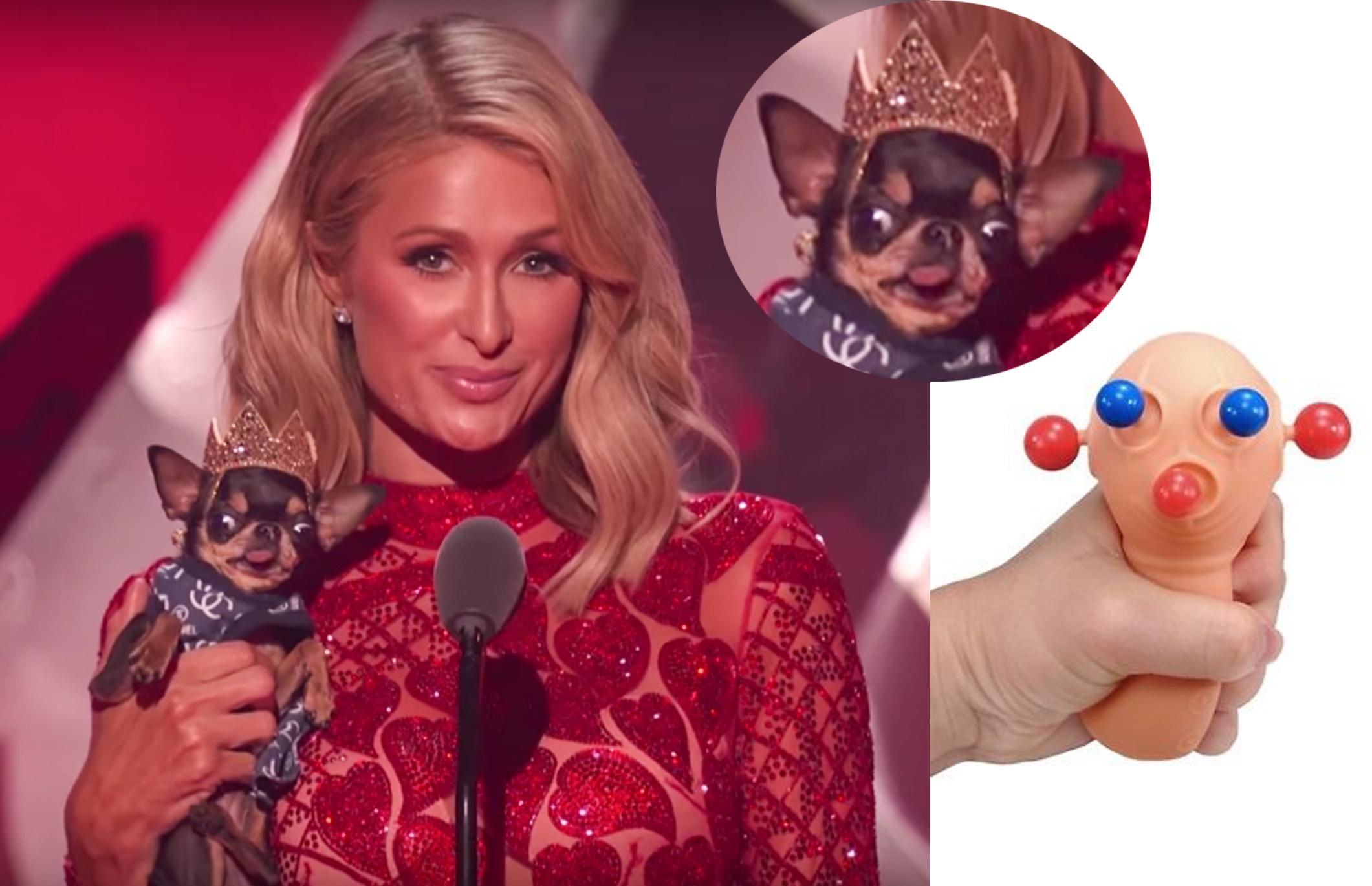 In case you missed it last night, here is Paris Hilton squeezing her dog