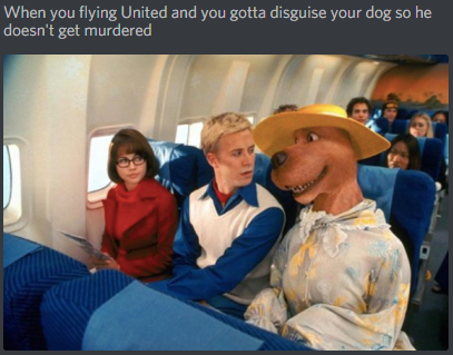 When you flying United