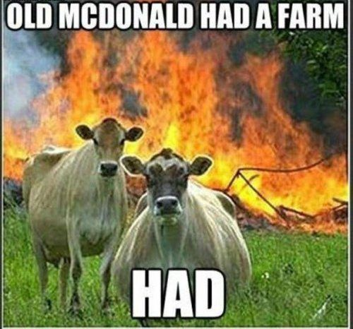 Old McDonlad had a farm...