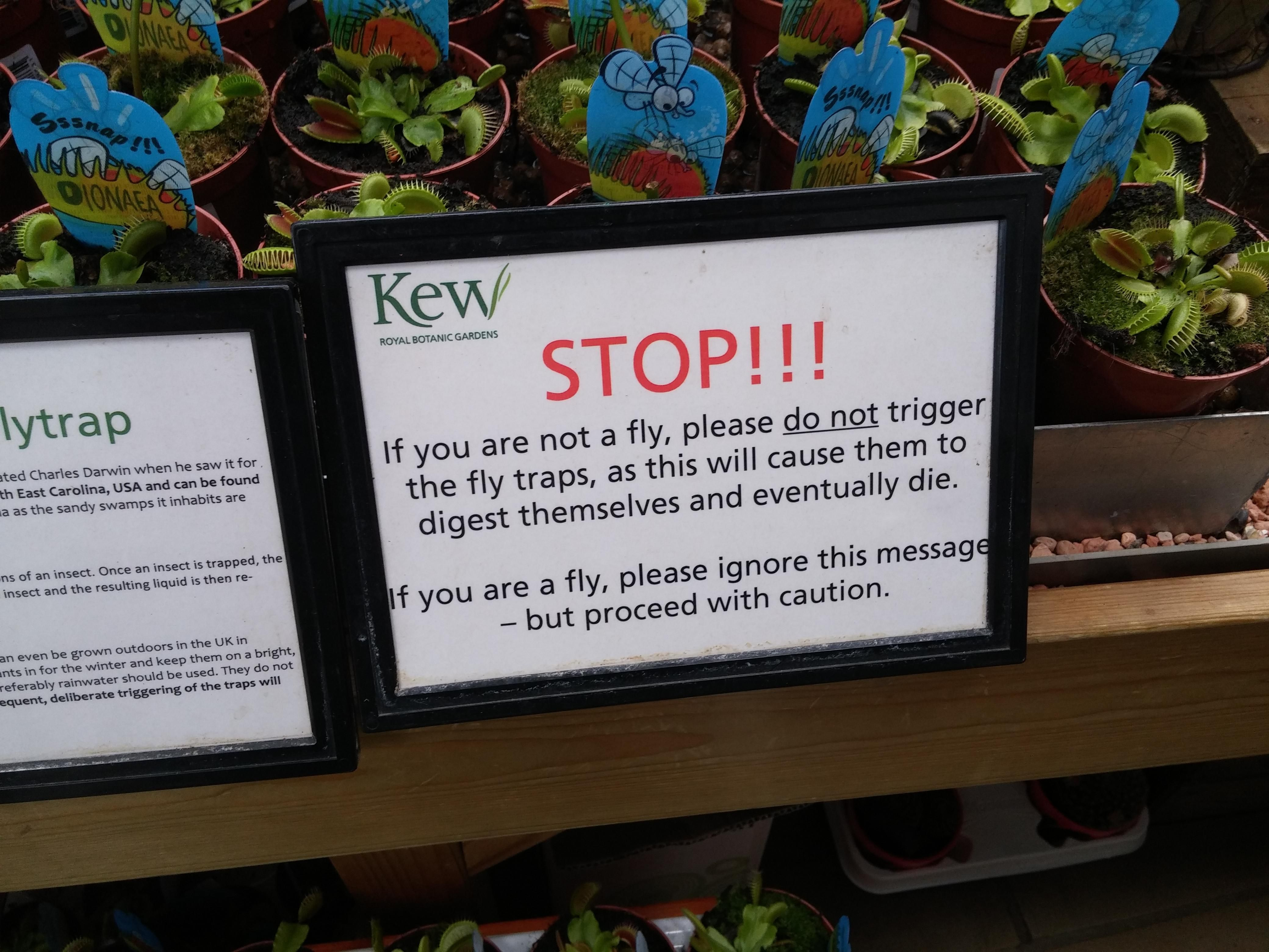 This sign in front of a bunch of Venus Flytrap.
