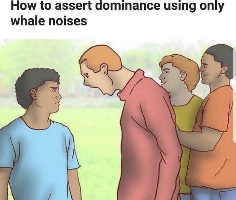 Assert your dominance