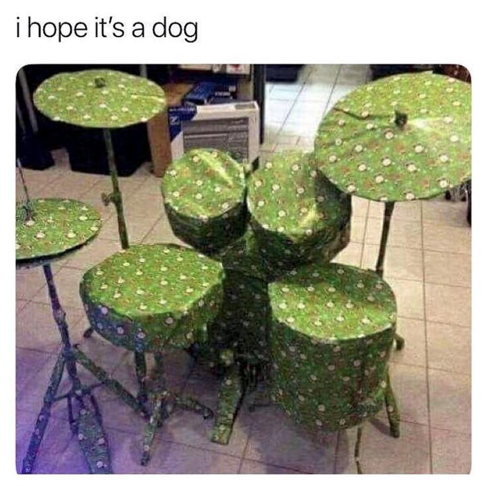 i hope it's a dog