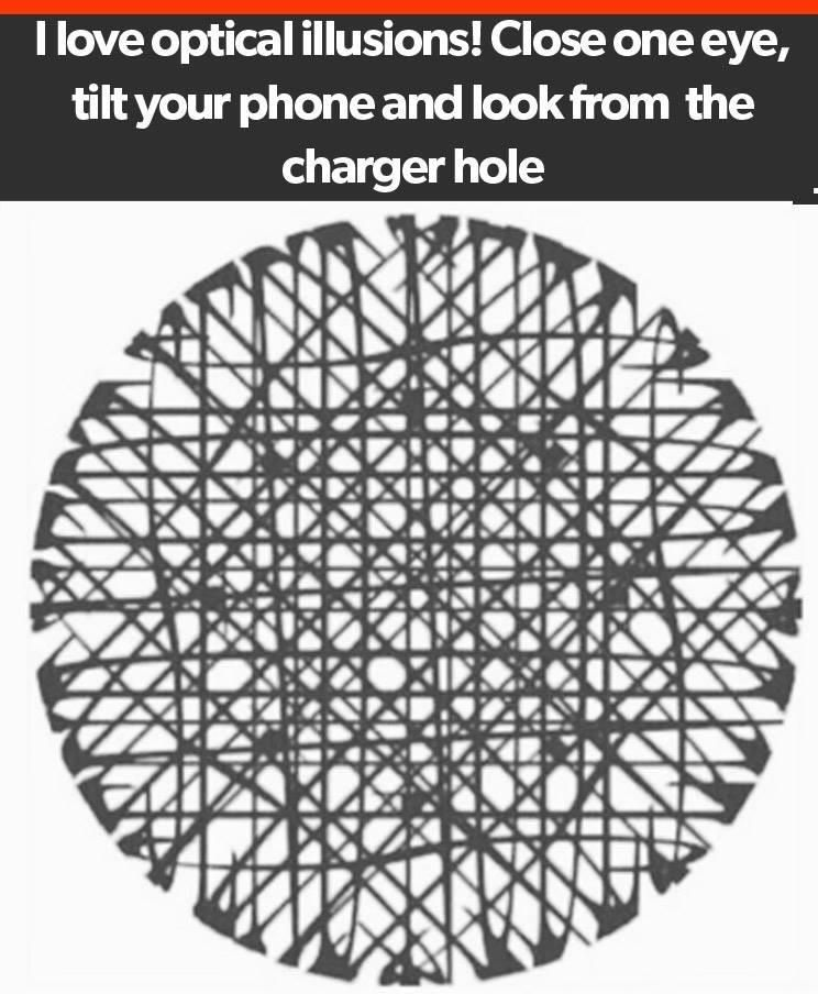 I Love Optical Illusions !!!