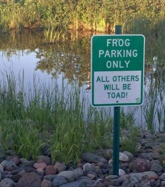 Frog parking only...