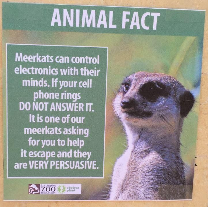 Sign Found At The La Zoo