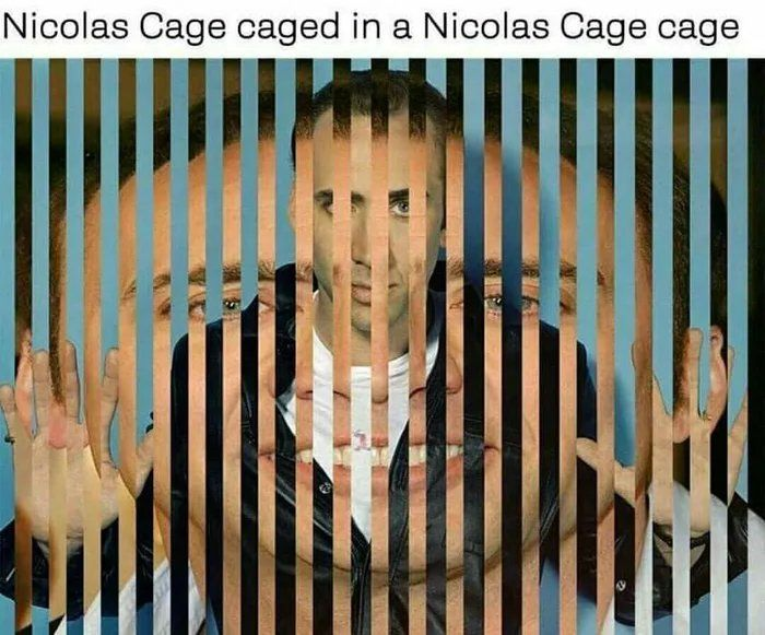 A post of Nicholas Cage in a Nicholas Cage cage