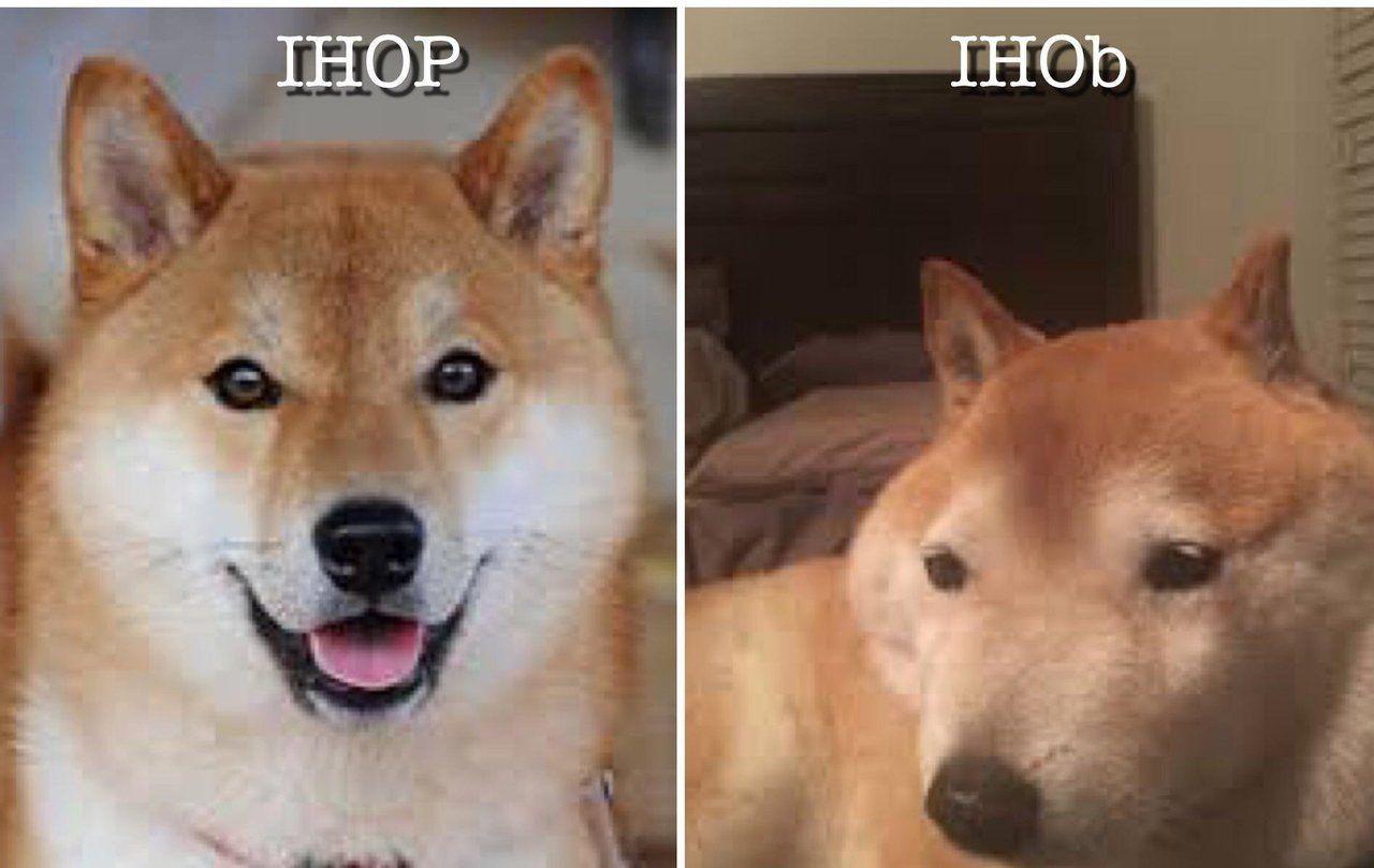 IHOP vs IHOB