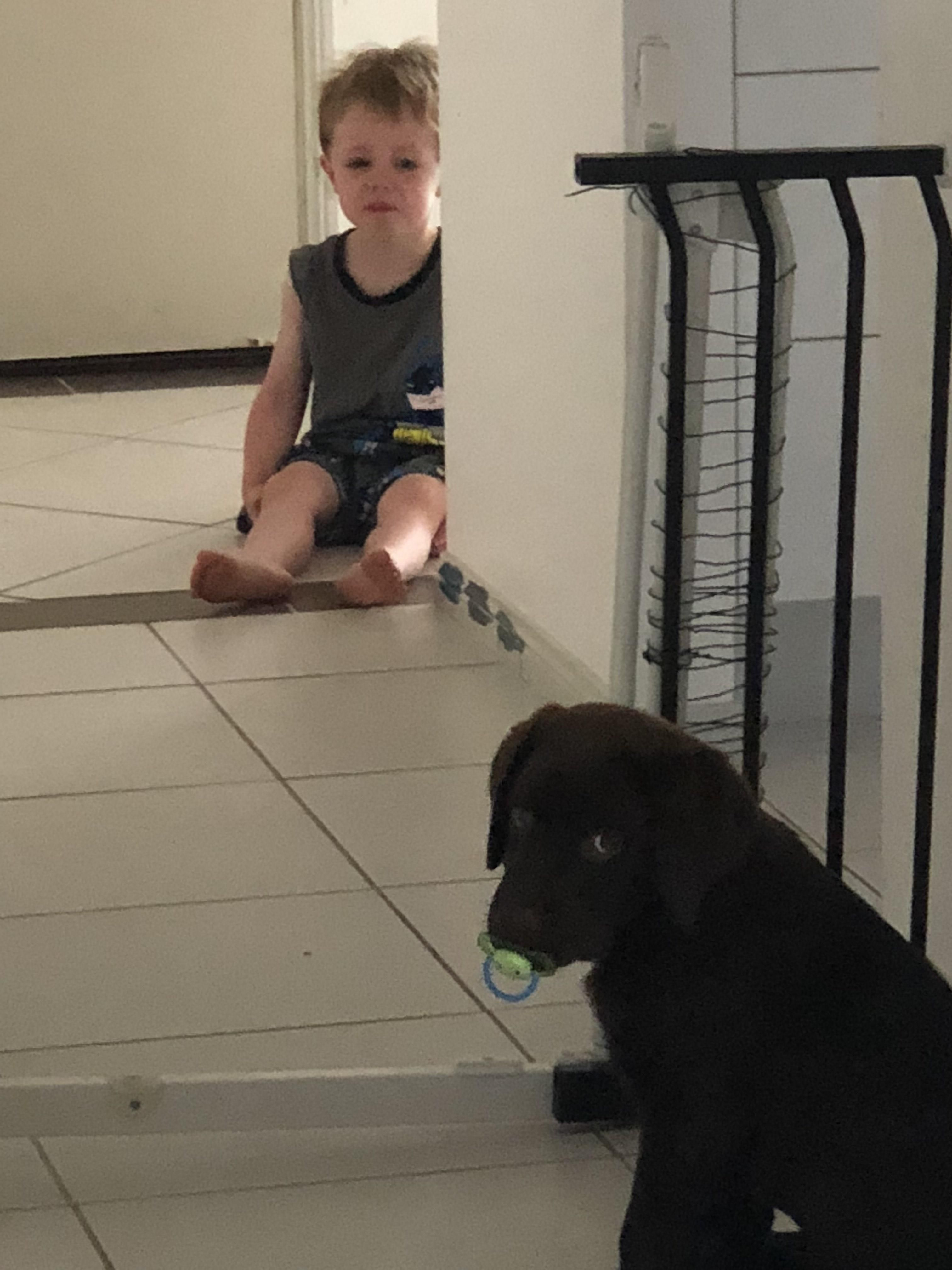 My son is still getting used to the new puppy