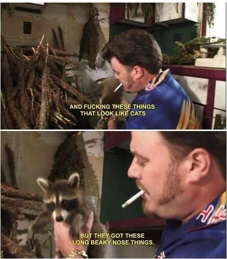 Guardians of the galaxy 3 looks great