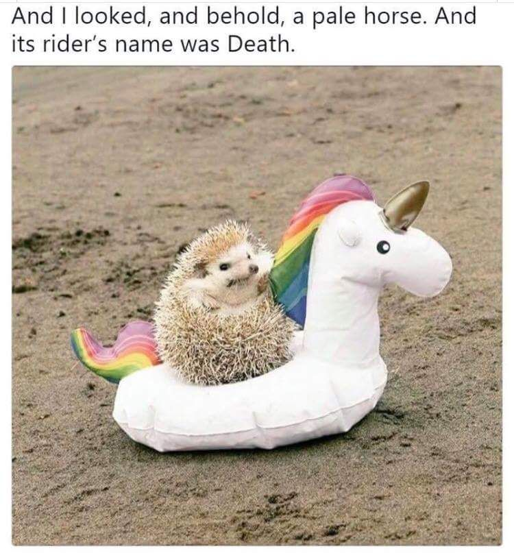 ...and the rider's name was Death