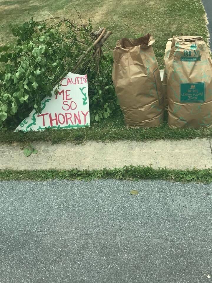 Warning waste management, wife nailed it.