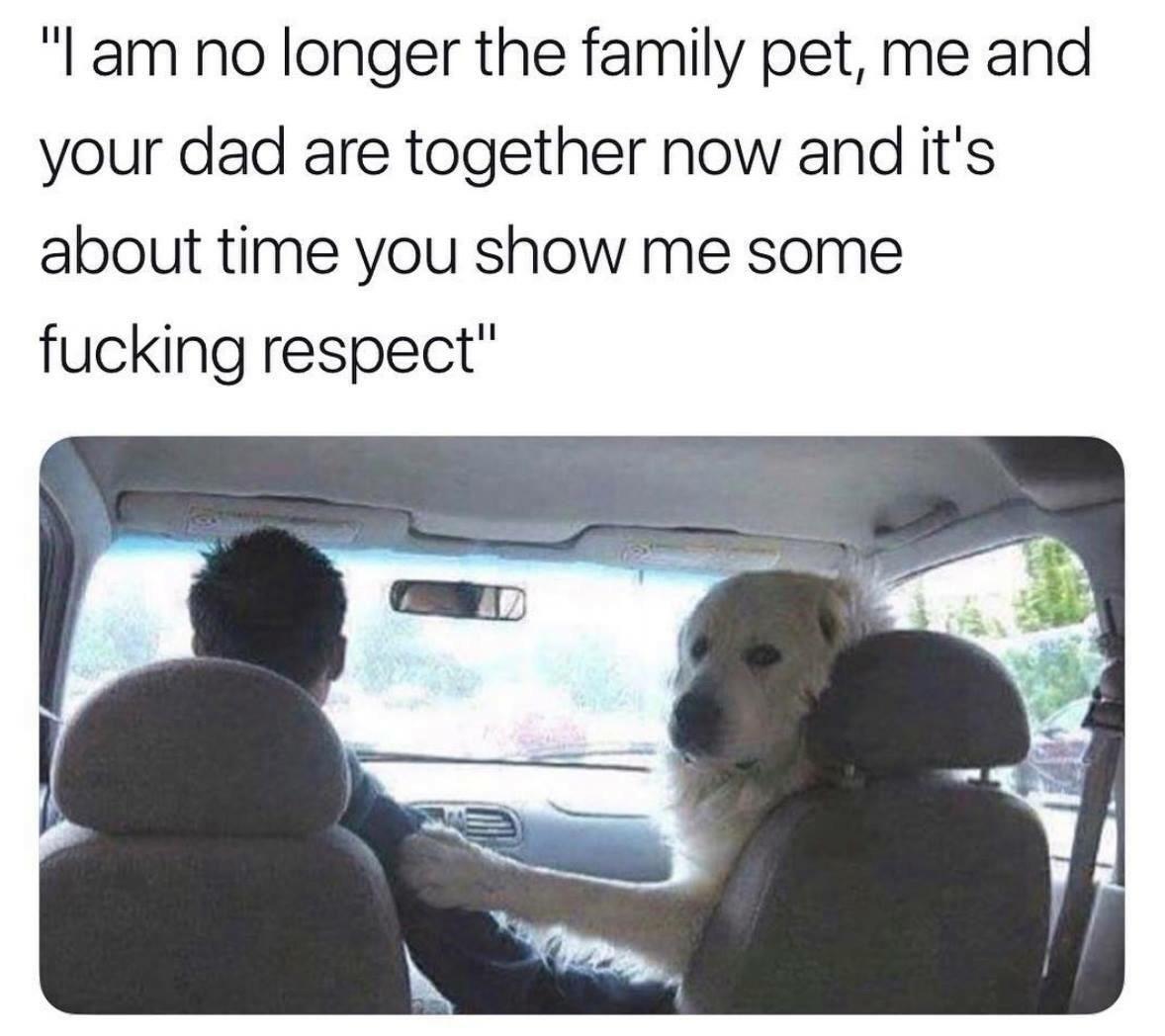 Don't Make Me Make Him Turn This Car Around