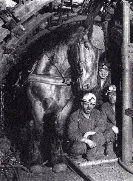 Mr.Bean mining coal in Ukraine.