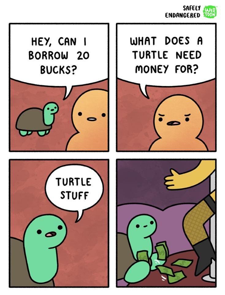 """""""Turtle stuff"""""""
