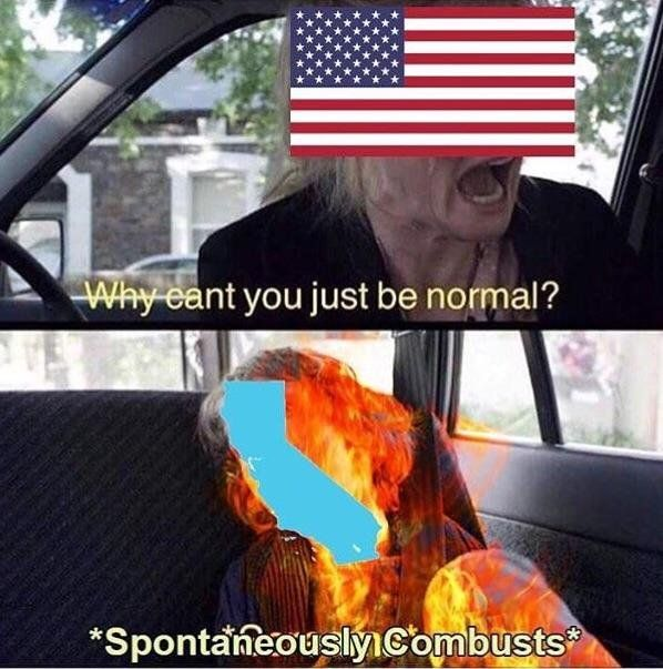 I must apologize for California, it is an idiot, we have purposely trained it wrong, as a joke