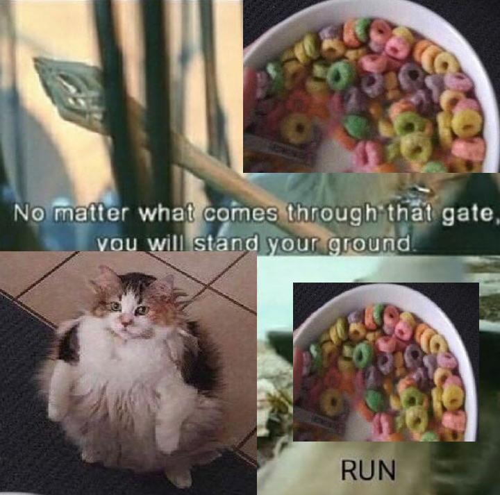 run bröther