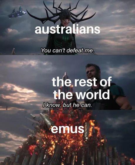 emu op