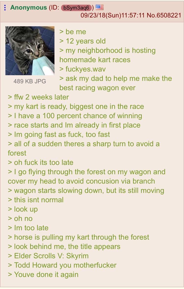Anon goes kart racing