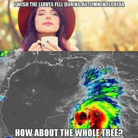 Fall in Florida