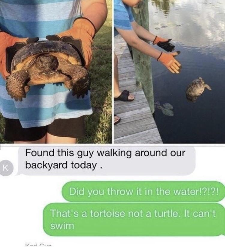 Darwin didn't see this comin