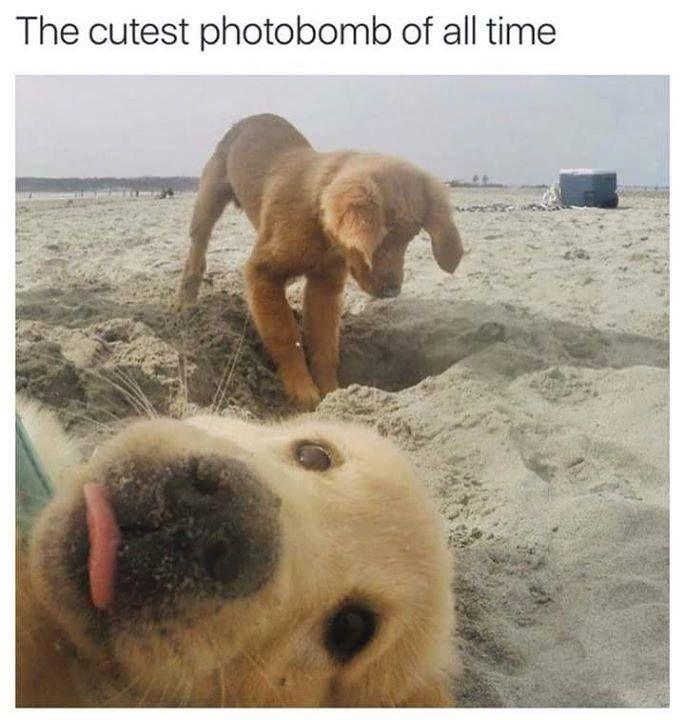 Selfie hhhhhh