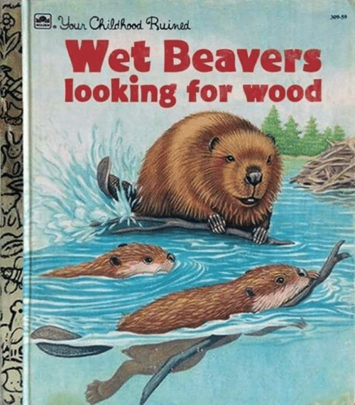 Wood or other Beavers, I'm not judging