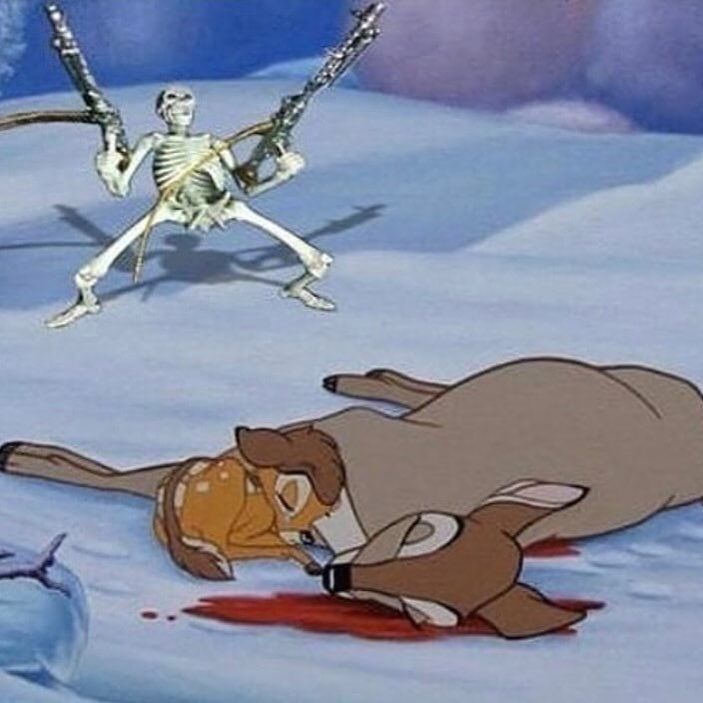 Animal dead