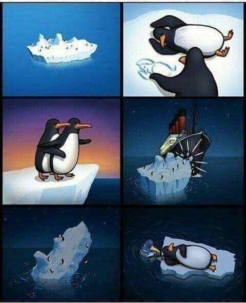 From a penguin's perspective.