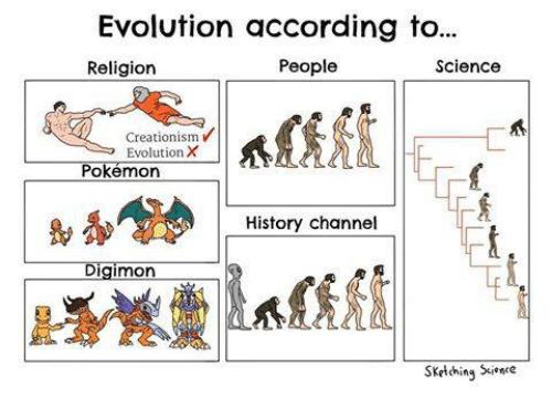 Evolution According to...