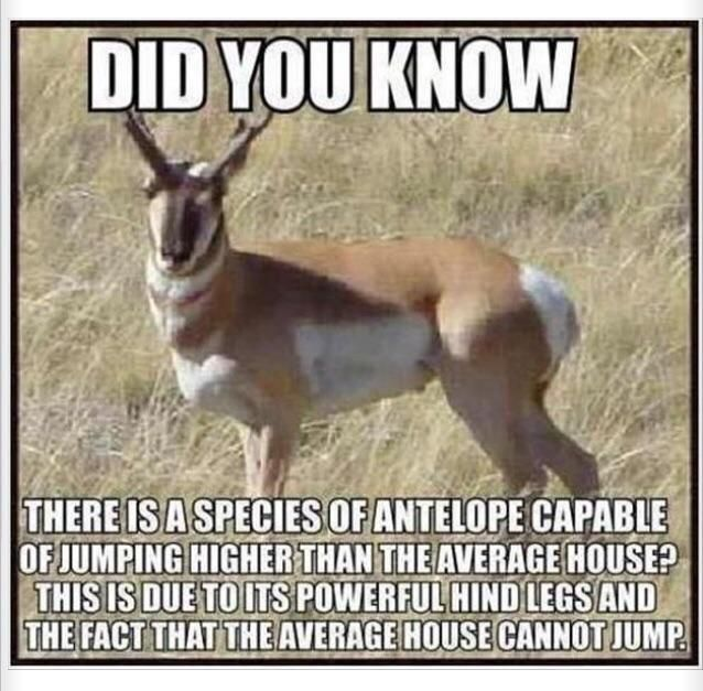 I never knew that..