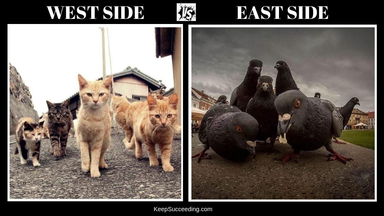 East side vs West side!