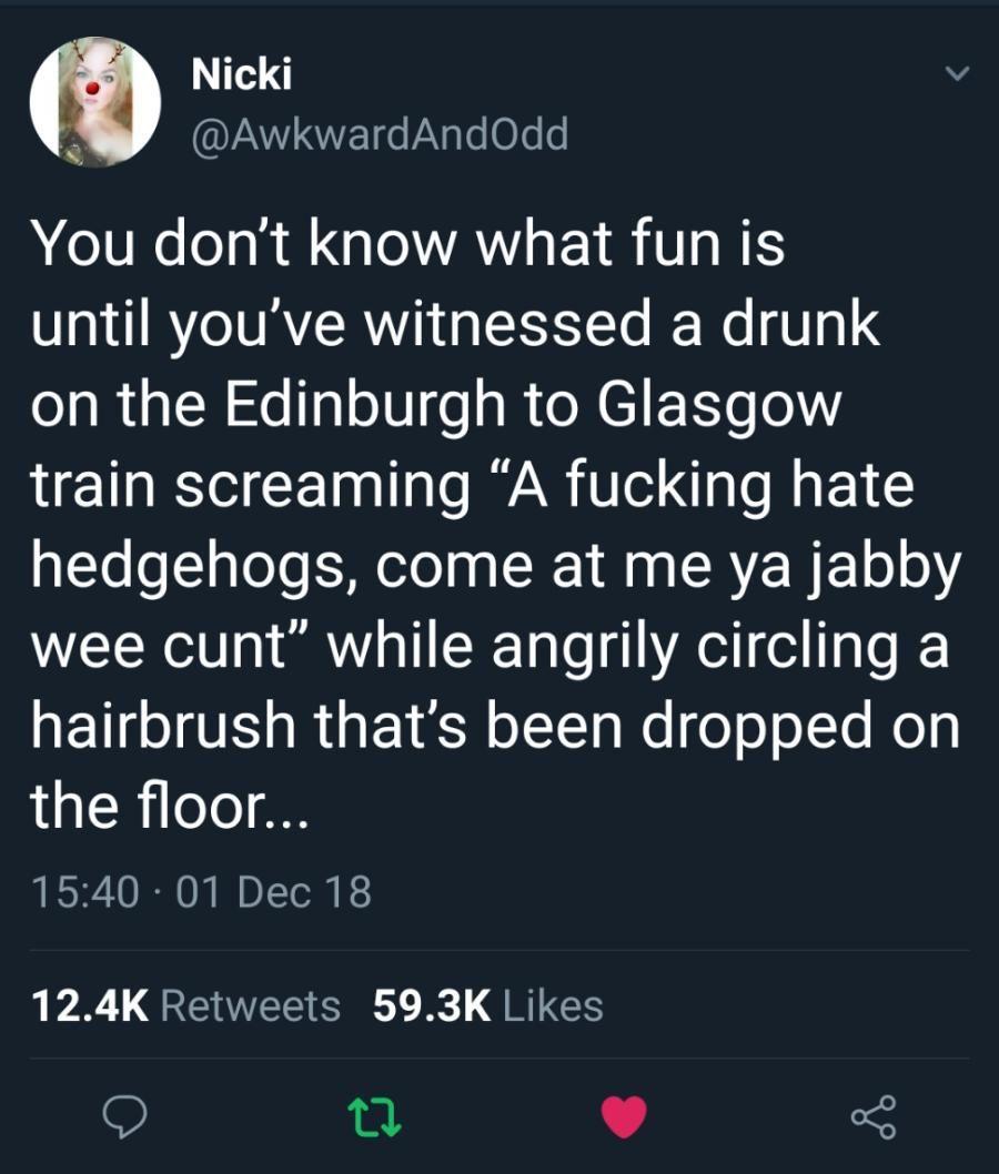 A hedgehog in Scotland