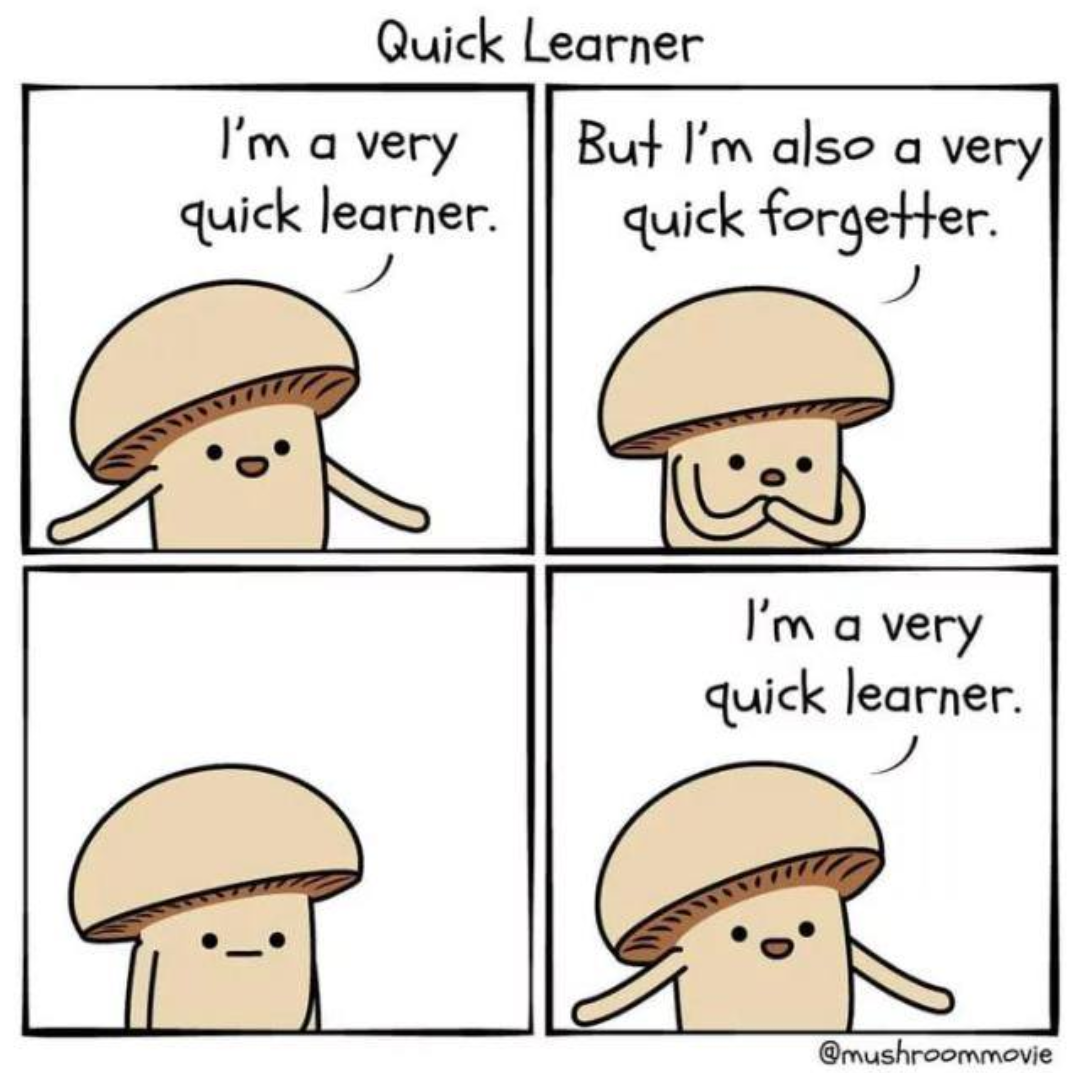 Quick learner