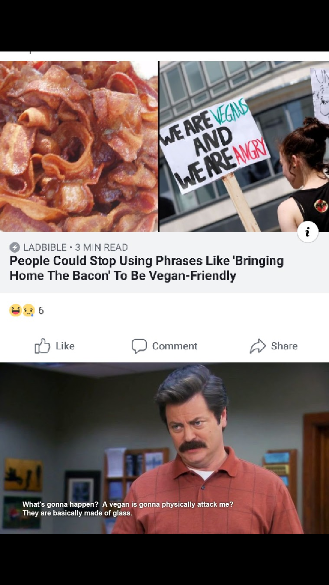 """""""Veganism is the sad result of a morally corrupt mind. Reconsider your life."""" - Ron Swanson"""