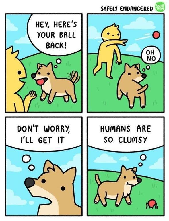 I did this like 8 times! Stop human!