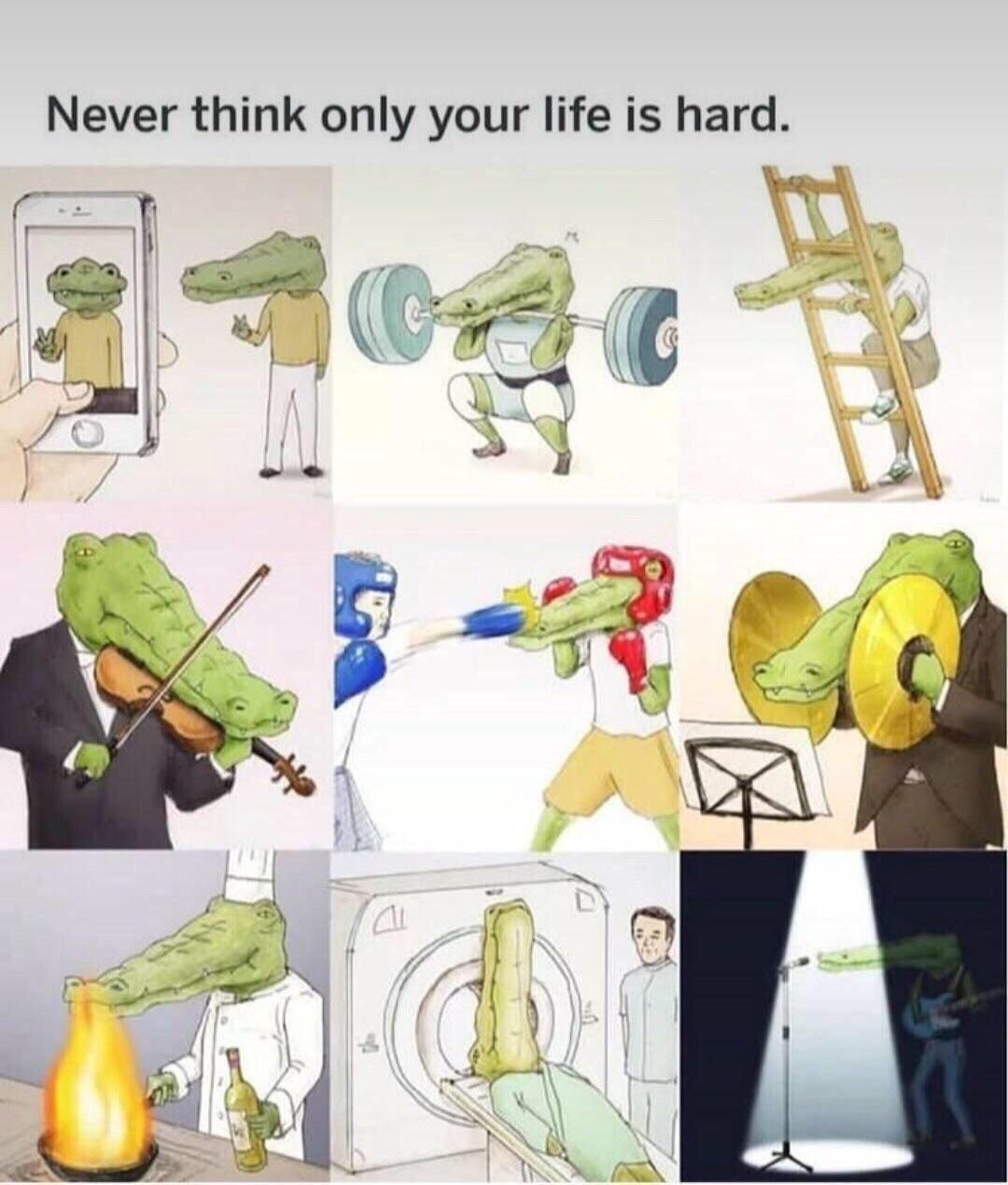 Crocs life