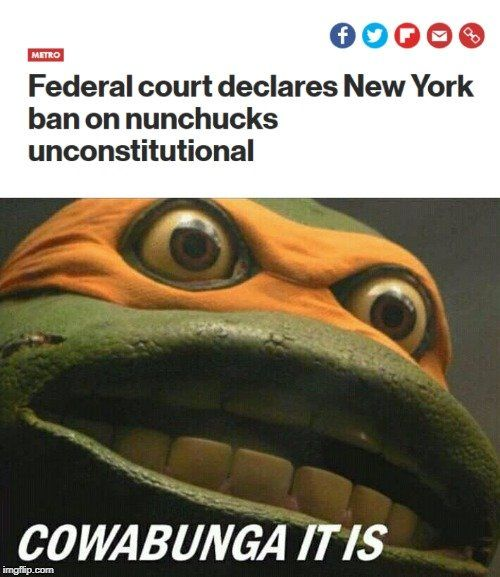 Mikey can now achieve cowabunga to the fullest extant