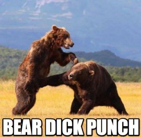 Unfair bear