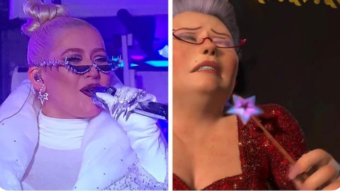 Christina Aguilera is the fairy godmother from shrek 2