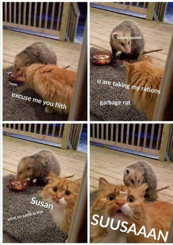 Susan is dead. There's only possum now.