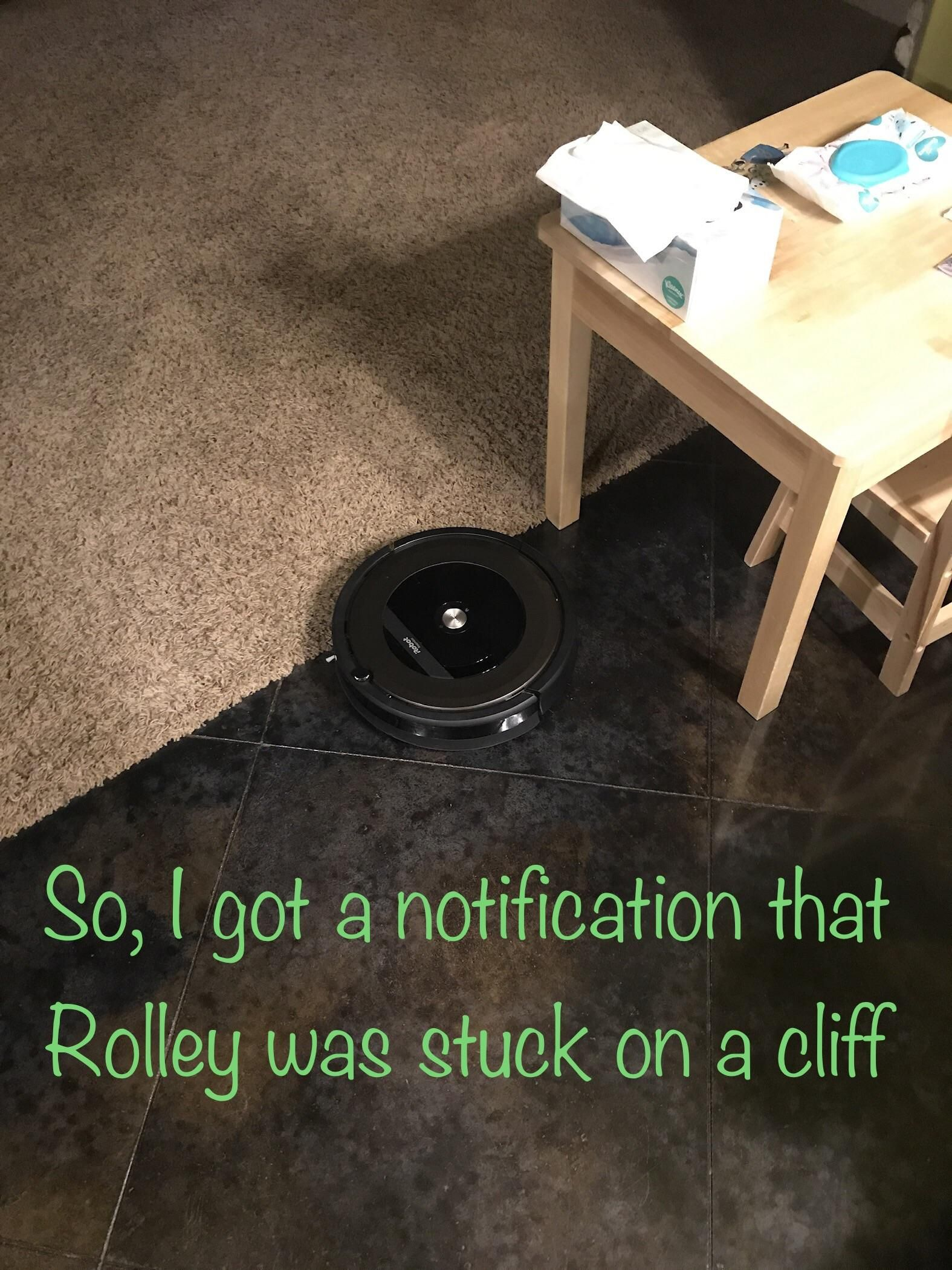 My Roomba thought it was falling off a cliff, so it quivered here in fear until his battery died.