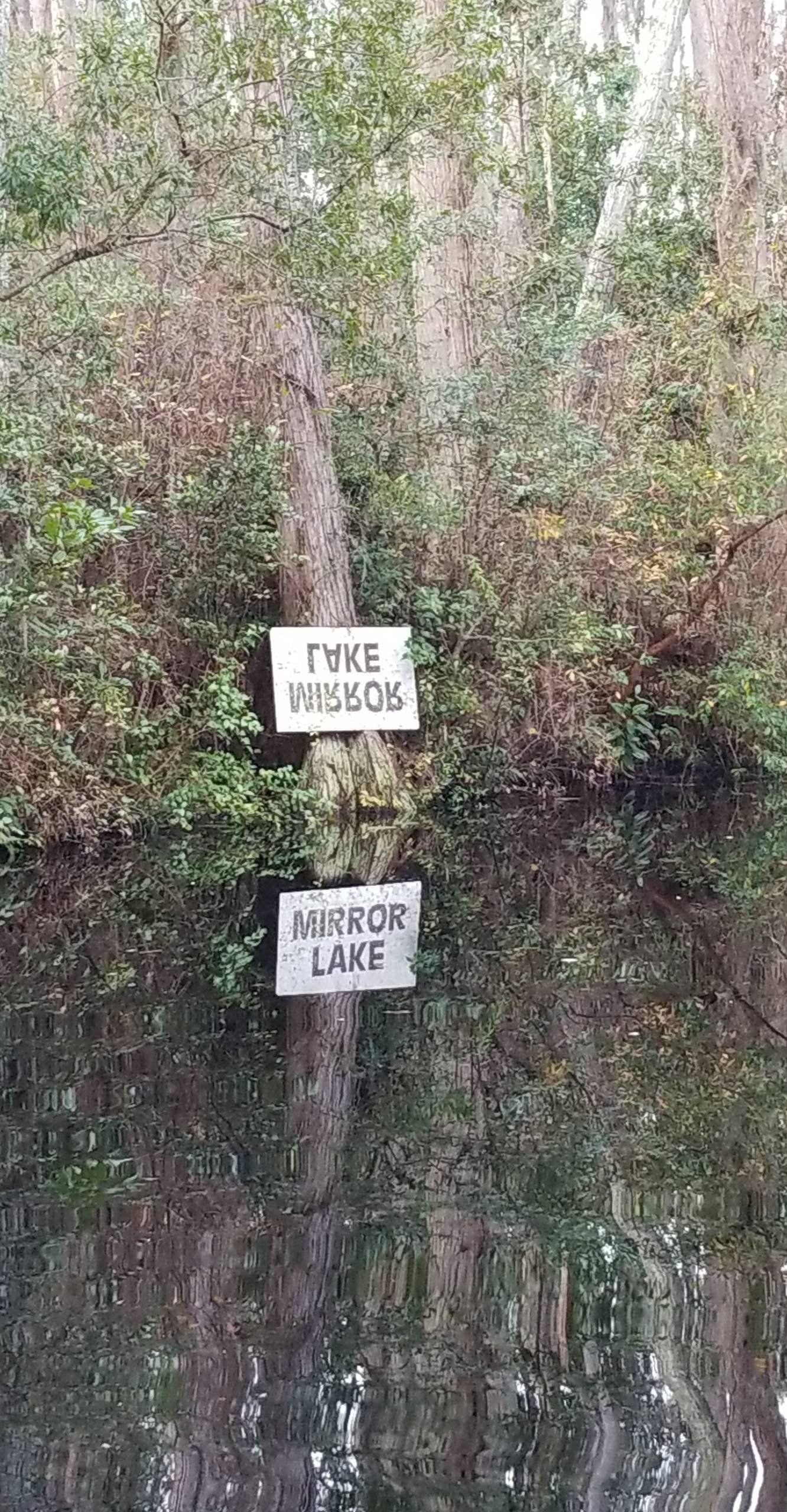 Lake Mirror or Mirror Lake?