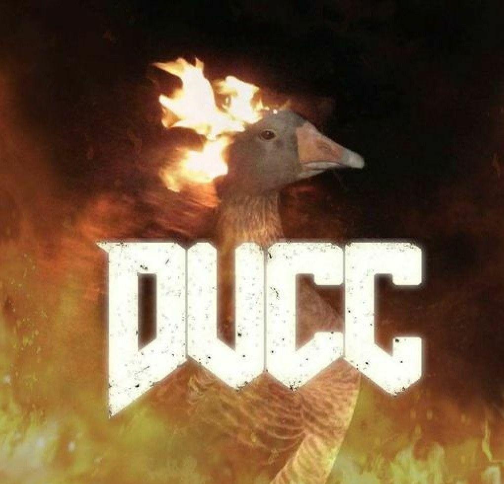 My duck has been possessed by hellspawns. Pls send halp.