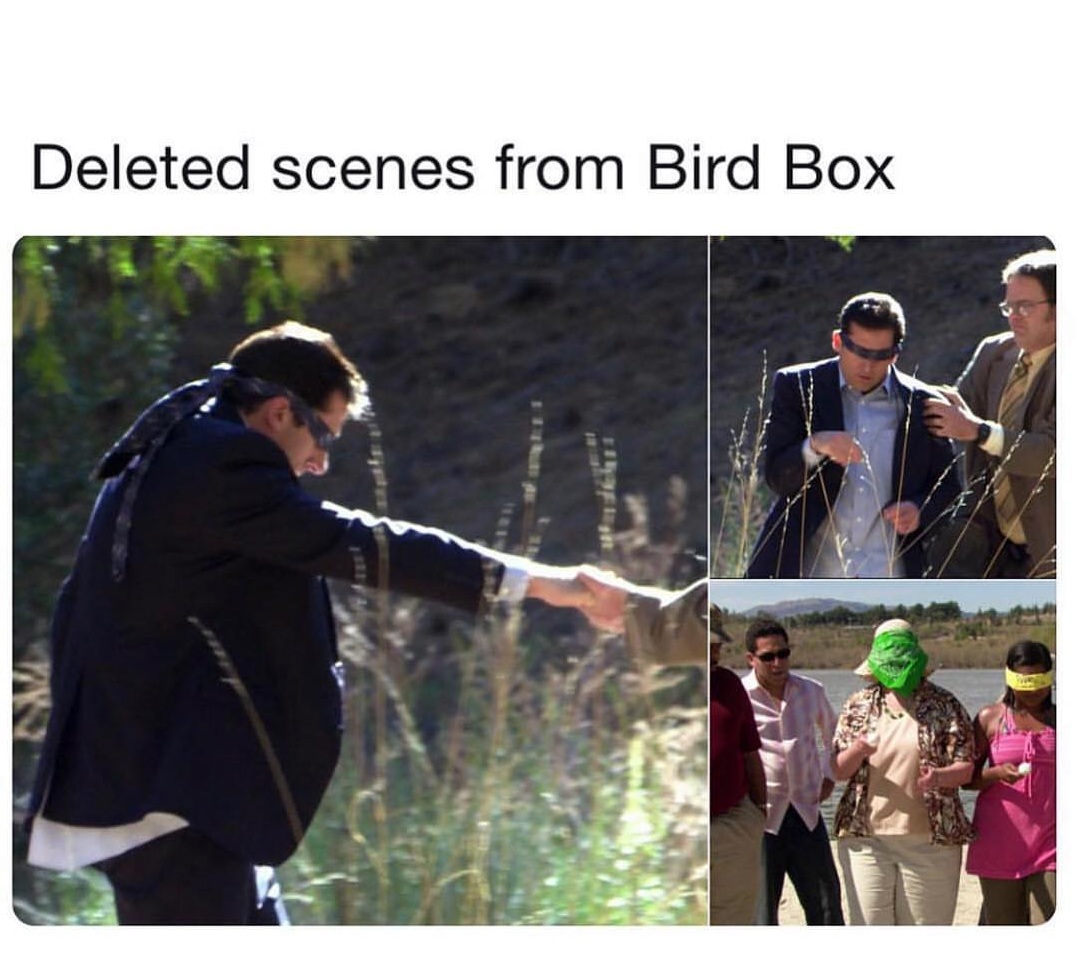 Deleted scenes from Bird Box